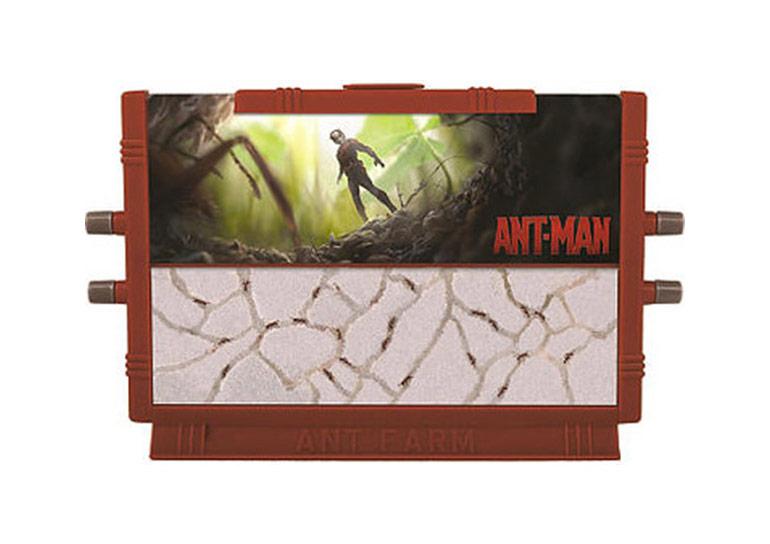 Ant Man Ant Farm